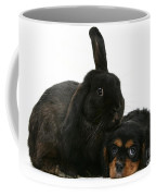 Cavalier King Charles Spaniel And Rabbit Coffee Mug