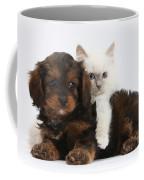 Cavapoo Pup And Blue-point Kitten Coffee Mug
