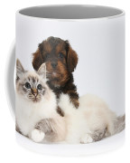 Cavapoo Pup And Tabby-point Birman Cat Coffee Mug