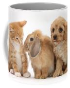 Cavapoo Pup, Rabbit And Ginger Kitten Coffee Mug