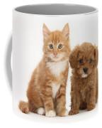 Cavapoo Puppy And Kitten Coffee Mug