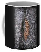 Cedar On Granite Coffee Mug