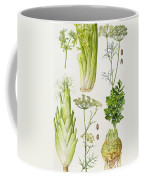 Celery - Fennel - Dill And Celeriac  Coffee Mug by Elizabeth Rice