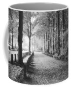 Cemetery At Ypres  Coffee Mug by Simon Marsden