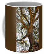 Centenarian Cork Tree Coffee Mug