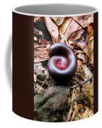 Center Centipede Coffee Mug
