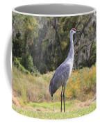 Central Florida Sandhill Crane With Oaks Coffee Mug