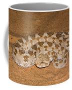Cerastes Cerastes Horned Viper Coffee Mug