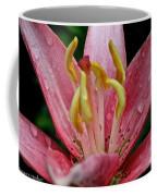Ceres Coffee Mug