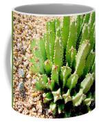 Cereus Peruvianis Cactus Coffee Mug