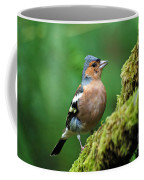 Chaffinch Coffee Mug
