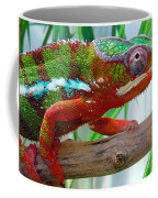 Chameleon Close Up Coffee Mug