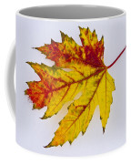 Changing Autumn Leaf In The Snow Coffee Mug