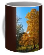 Changing Leaves Coffee Mug