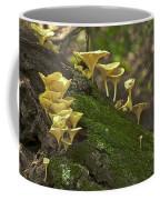 Chanterelles 8681 Coffee Mug