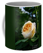 Charles Darwin Rose Coffee Mug