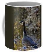 Chase Me  Coffee Mug