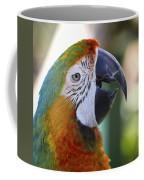 Chatty Macaw Coffee Mug