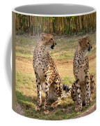 Cheetah Chat 1 Coffee Mug
