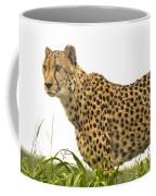 Cheetah Hunting Coffee Mug