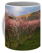 Cherry Blossom Pink Coffee Mug