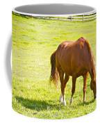 Chestnut Grazing Coffee Mug
