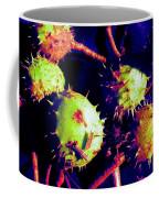 Chestnut Pods 1 Coffee Mug