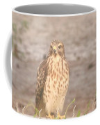 Chicken Hawk 1 Coffee Mug