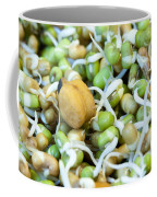 Chickpea And Other Lentils In The Form Of Healthy Eatable Sprouts Coffee Mug