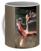 Chilean Flamingo Coffee Mug