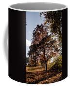 Chinbrook Meadows Coffee Mug
