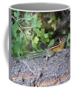 Chipmunk On A Log Coffee Mug