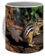 Chipmunk On A Log Coffee Mug