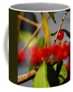Choice Berry Coffee Mug by LeeAnn McLaneGoetz McLaneGoetzStudioLLCcom