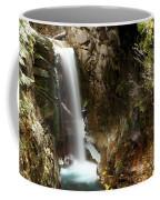 Christine Falls Canyon Coffee Mug