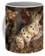 Chromodoris Kunei Nudibranch Carrying Coffee Mug