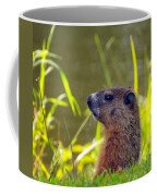 Chucky Woodchuck Coffee Mug