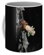 Cicada - First In Series Coffee Mug
