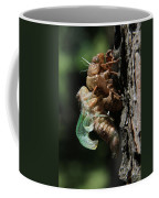 Cicada - Third In Series Coffee Mug