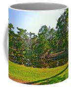 City Park Lagoon Coffee Mug