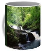 Clare Glens, Co Limerick, Ireland Irish Coffee Mug