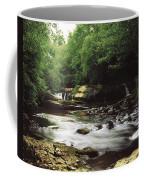 Clare River, Clare Glens, Co Tipperary Coffee Mug