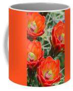 Claret-cup Cactus 2am-28736 Coffee Mug