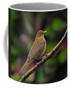 Clay-coloured Robin Coffee Mug