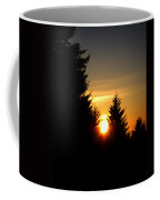 Clearing The Trees In The Morning Coffee Mug