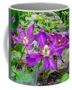 Clematis Abby Aldrich Rockefeller Garden Coffee Mug