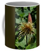 Clematis Mop Coffee Mug