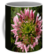Cleome Coffee Mug