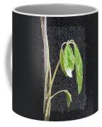 Climbing Coffee Mug by Tim Allen