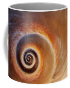 Close Up Of A Moon Snail Shell Showing Coffee Mug by Darlyne A. Murawski